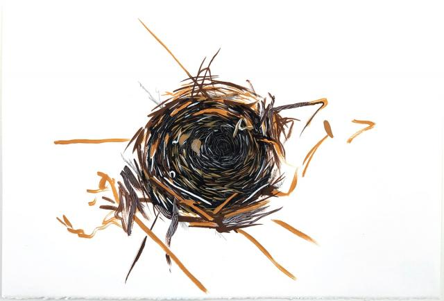 Nest study